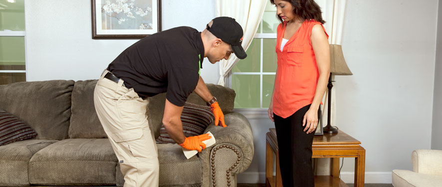 Anchorage, AK carpet upholstery cleaning