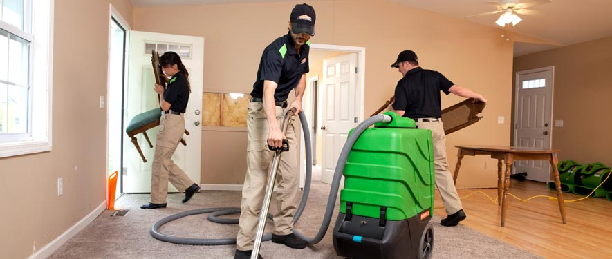 Anchorage, AK cleaning services